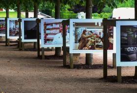 De grands panneaux photo sont accrochés aux arbres du jardin de l'évêché.