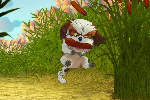 Un chien se promène dans l'herbe.