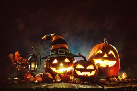 Installation pour Halloween, avec notamment des citrouilles creusées et illuminées de l'intérieur par une bougie pour former des visages.