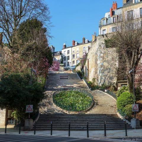 L'escalier Denis-Papin depuis le bas des marches, sans décoration sur les contremarches, photographié à l'approche du printemps sous un ciel dégagé.