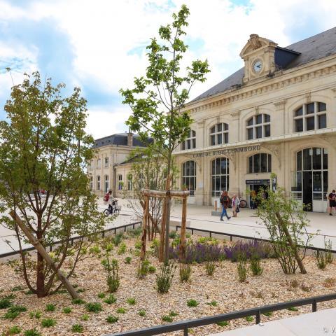 Parvis de la gare, entièrement réservé aux circulations douces. Des parterres végétaux sont occupés par de jeunes arbres.