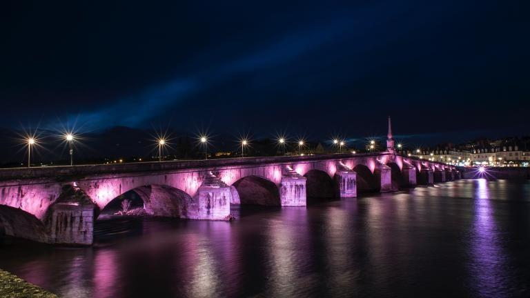 Le pont Jacques-Gabriel mis en lumière avec une teinte mauve respectant la biodiversité.