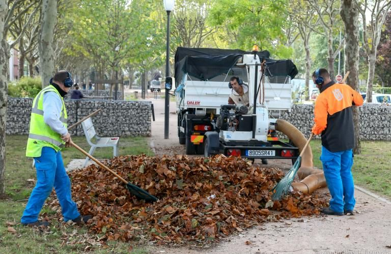 Des agents forment un tas de feuilles mortes.