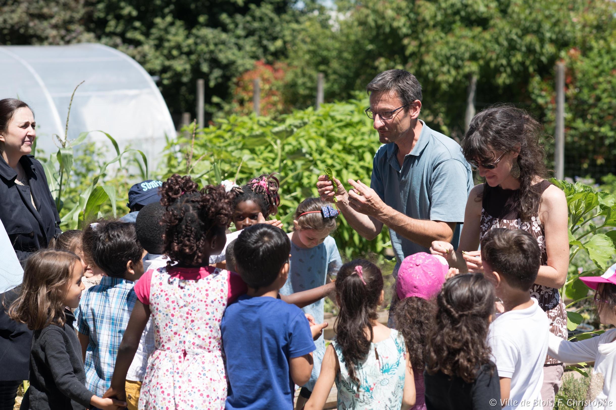 Un groupe d'enfants en sortie scolaire découvre la ferme de Brisebarre.
