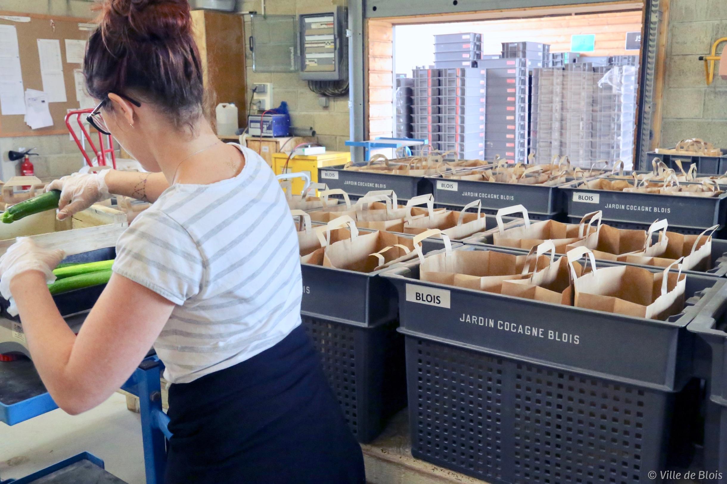 Une femme prépare des paniers de fruits et légumes.