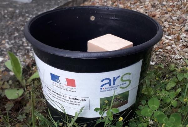 Piège pondoir pour moustique-tigre, sous forme de sceau de trois litres de contenance, disposé dans un coin d'un espace public.