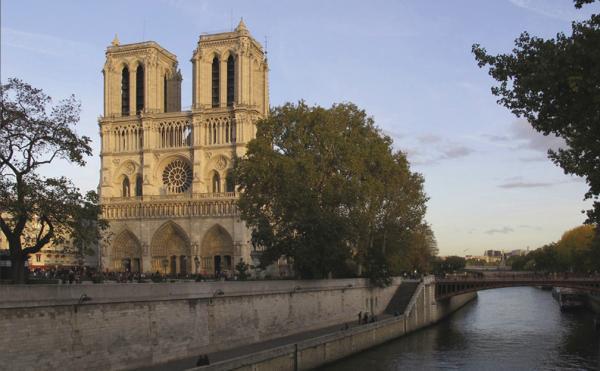 Cathédrale Notre-Dame de Paris, façade éclairée par le soleil couchant, à côté d'immenses arbres et de la Seine