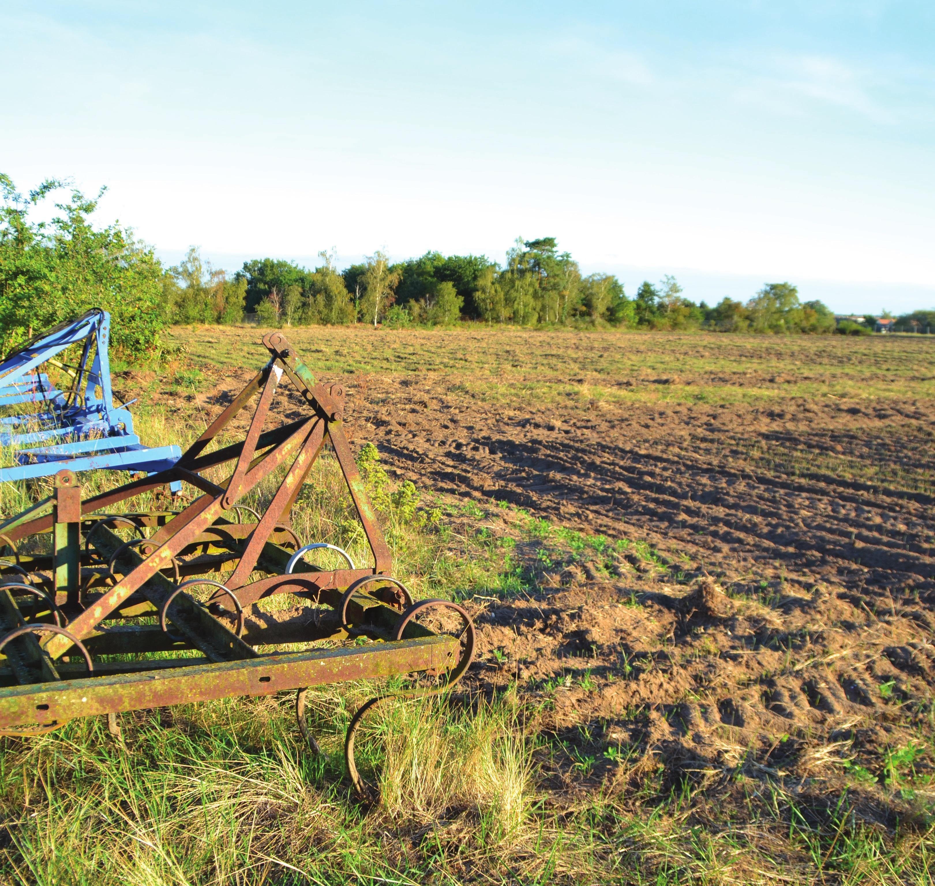 Photo des terres agricoles labourées.
